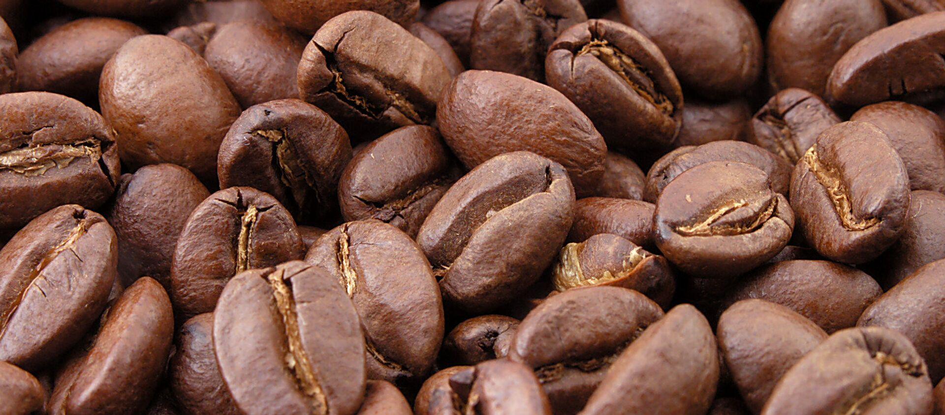 Granos de café - Sputnik Mundo, 1920, 01.01.2020