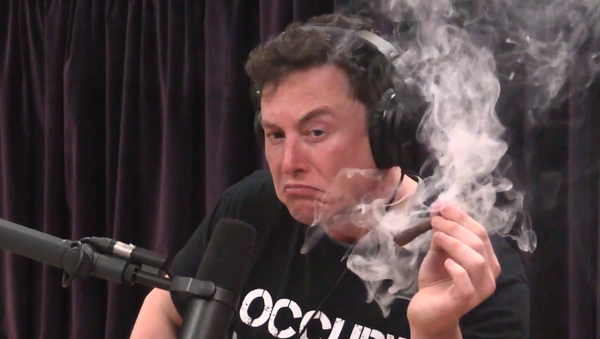 Elon Musk fuma marihuana - Sputnik Mundo