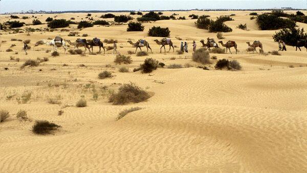 El desierto del Sahara - Sputnik Mundo