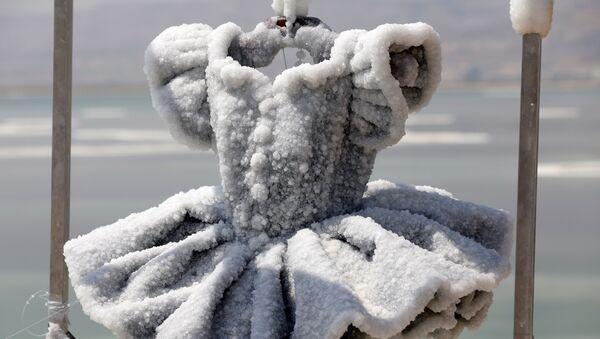El tutú de una bailarina, convertido en una escultura de 200 kilos de capas de sal, obra de la artista israelí Sigalit Landau - Sputnik Mundo