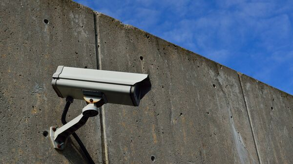Una cámara de vigilancia (imagen ilustrativa) - Sputnik Mundo