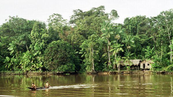 La selva amazónica - Sputnik Mundo