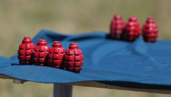 Unas granadas de entrenamiento, imagen referencial - Sputnik Mundo