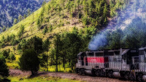El tren de pasajeros en México - Sputnik Mundo