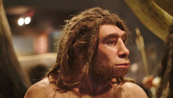 Un homo neanderthalensis en el museo de Munster (Alemania) - Sputnik Mundo