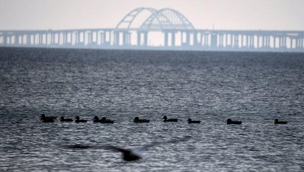 Puente de Crimea sobre el estrecho de Kerch - Sputnik Mundo