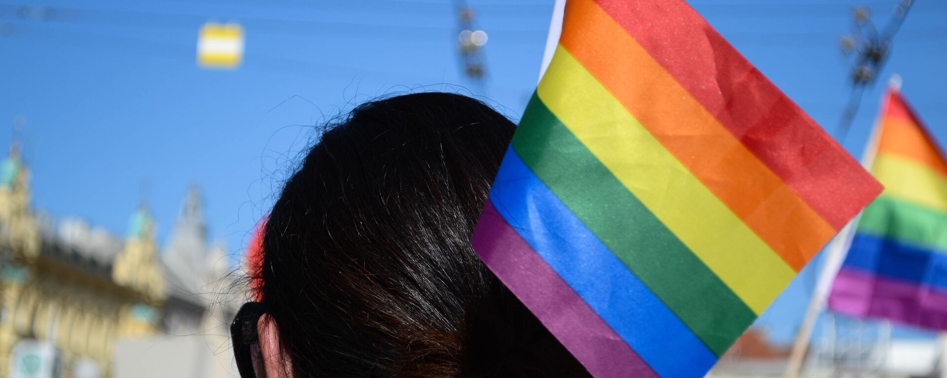 La bandera de la comunidad LGBT - Sputnik Mundo, 1920, 09.09.2021