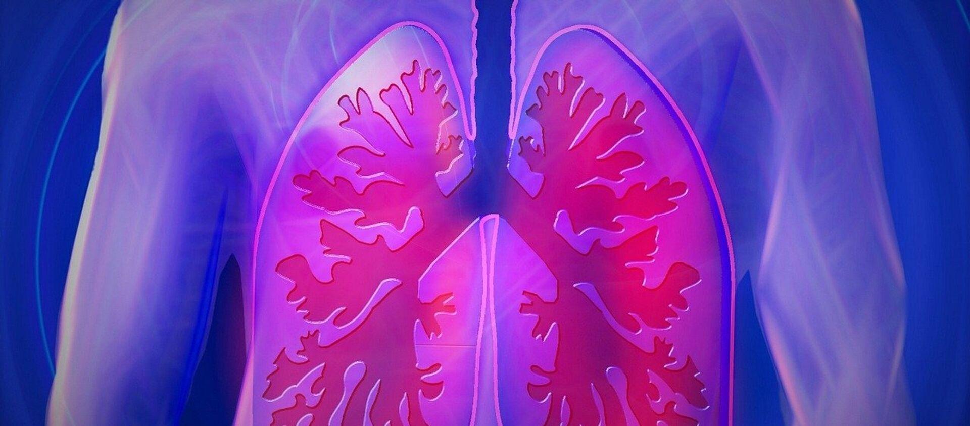 Los pulmones de una persona - Sputnik Mundo, 1920, 12.11.2019