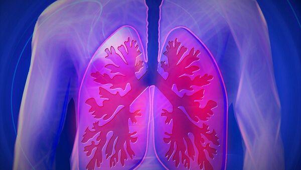 Los pulmones de una persona - Sputnik Mundo