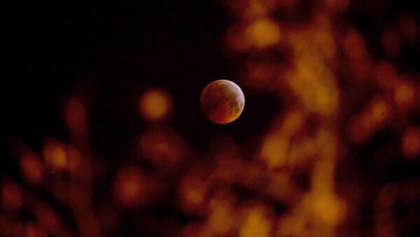 Кровавое лунное затмение в Бельгии  - Sputnik Mundo