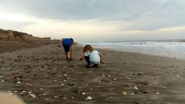 La pequeña Indira junto a su hermano en la playa Camet Norte, ubicada al centro sur de la provincia de Buenos Aires - Sputnik Mundo