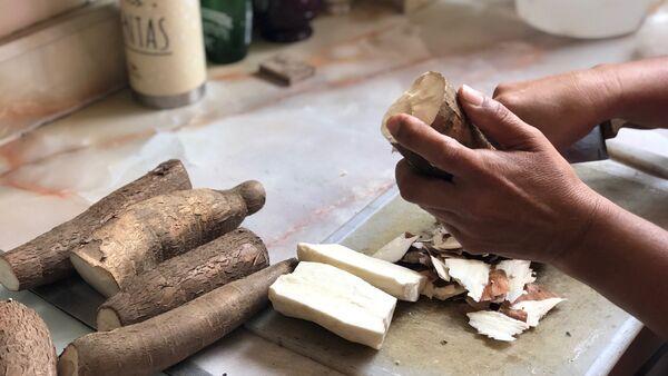 La yuca, o mandioca, es un ingrediente base en muchas cocinas de América Latina; en Venezuela ahora su consumo se ve incrementado por ser una opción nutritiva al alcance - Sputnik Mundo