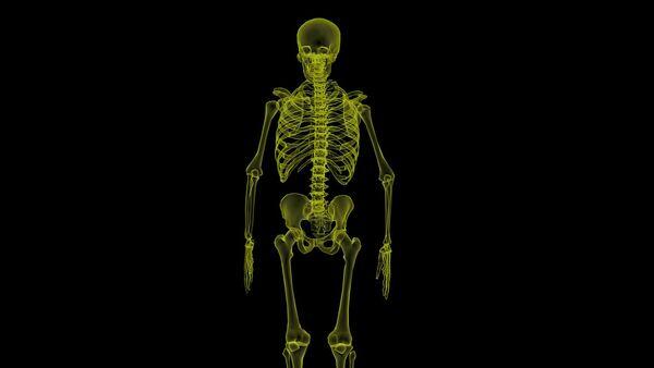 Esqueleto humano - Sputnik Mundo