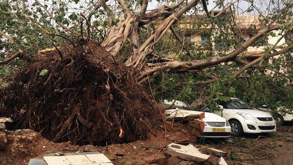 Las consecuencias del ciclón Fani en la India - Sputnik Mundo
