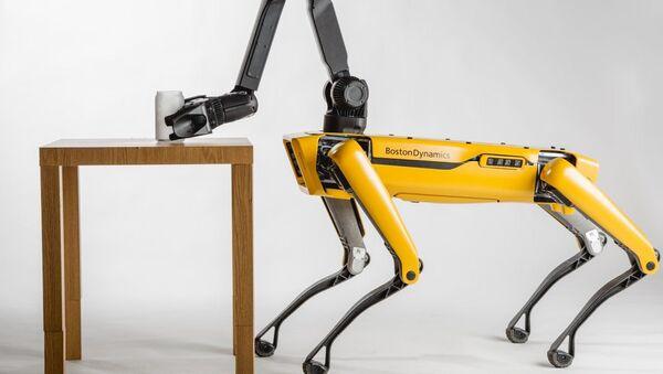 SpotMini, el robot cuadrúpedo de Boston Dynamics - Sputnik Mundo