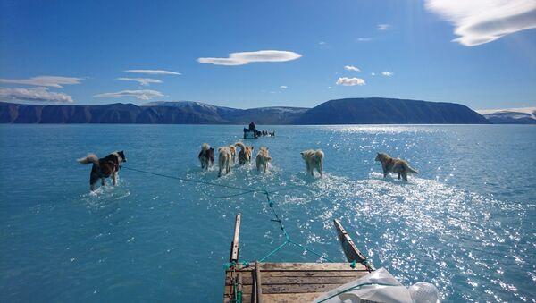 La foto tomada por el climatólogo Steffen M.Olsen durante una misión de rutina en el noroeste de Groenlandia - Sputnik Mundo