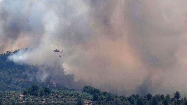 Incendio forestal en Cataluña - Sputnik Mundo