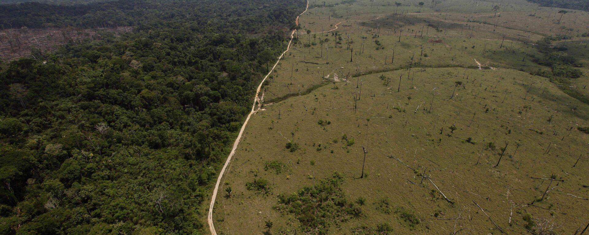 Una área deforestada en la Amazonía brasileña - Sputnik Mundo, 1920, 06.09.2021