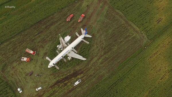Un avión de pasajeros hizo un aterrizaje de emergencia en la región de Moscú - Sputnik Mundo