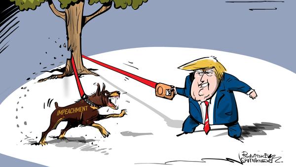 El 'impeachment' contra Trump ladra y no muerde - Sputnik Mundo