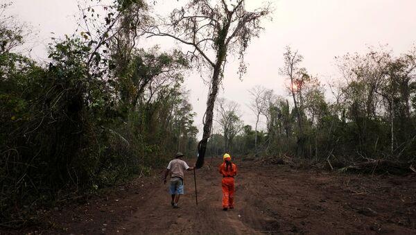 Consecuencias de los incendios forestales en Bolivia - Sputnik Mundo
