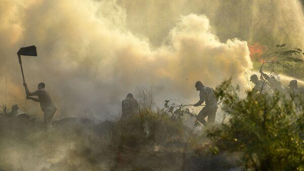 Incendios forestales en Paraguay - Sputnik Mundo