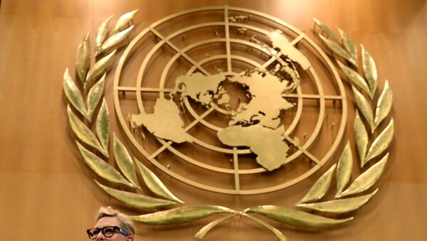 El escudo de la ONU - Sputnik Mundo