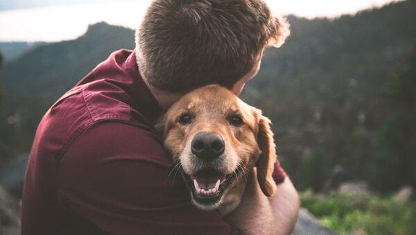Una persona y su perro - Sputnik Mundo