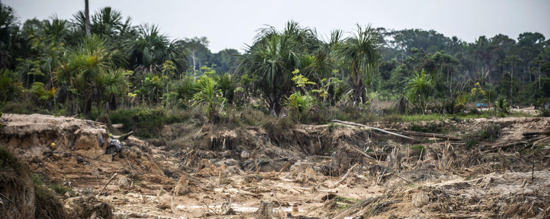 Deforestación causada por minería ilegal en la Amazonía peruana - Sputnik Mundo, 1920, 27.05.2021