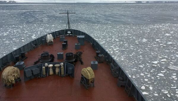 Altái, el barco de la expedición, rompe el hielo en las aguas del archipiélago Tierra de Francisco José - Sputnik Mundo