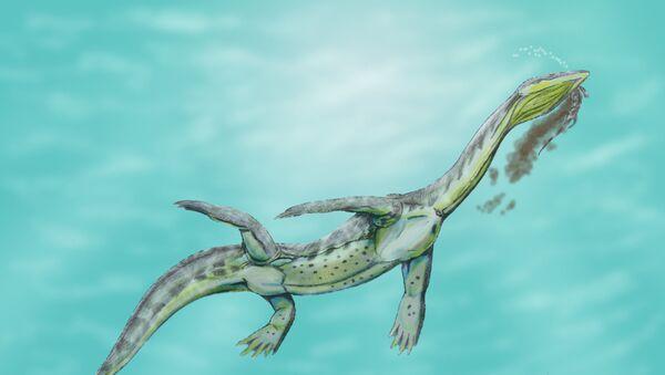 Recreación artística de un Ceresiosaurus calcagnii - Sputnik Mundo