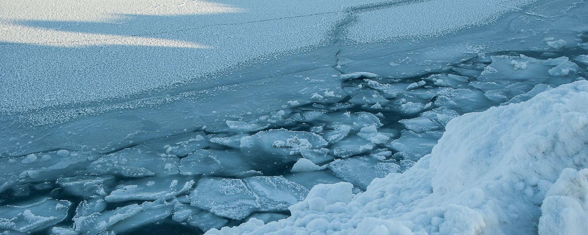 Ártico (imagen referencial) - Sputnik Mundo, 1920, 12.01.2021