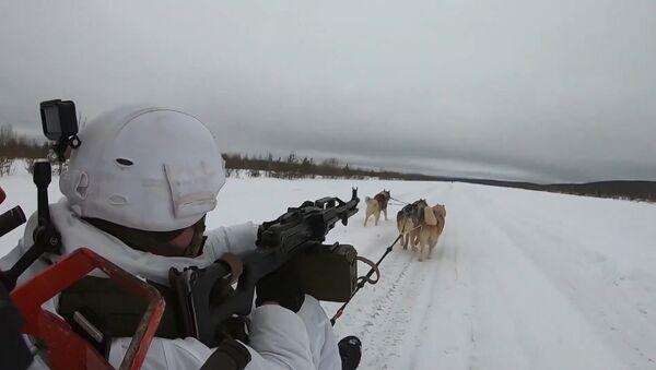 Los militares rusos aprenden a montar en trineos tirados por huskis - Sputnik Mundo