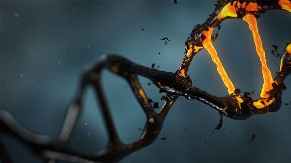 El ADN, imagen referencial - Sputnik Mundo