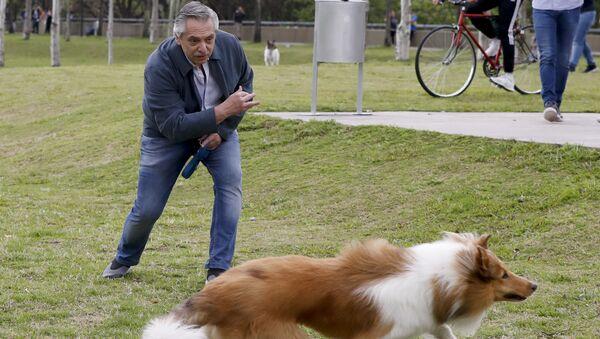 El presidente argentino, Alberto Fernández, juega con su perro Dylan  - Sputnik Mundo