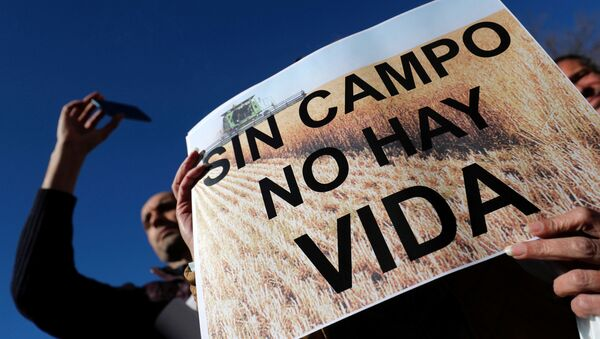 Protesta de agricultores en Madrid - Sputnik Mundo