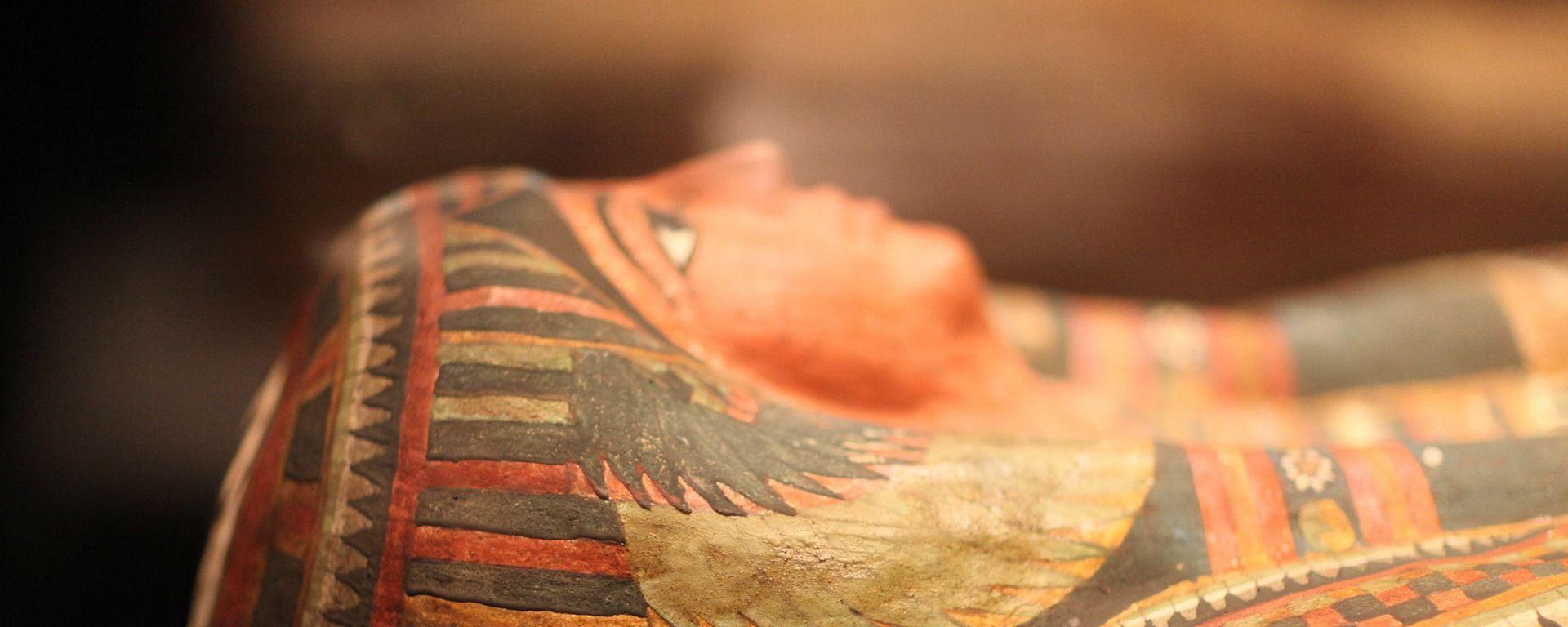 Un sarcófago de una momia egipcia - Sputnik Mundo, 1920, 02.02.2021