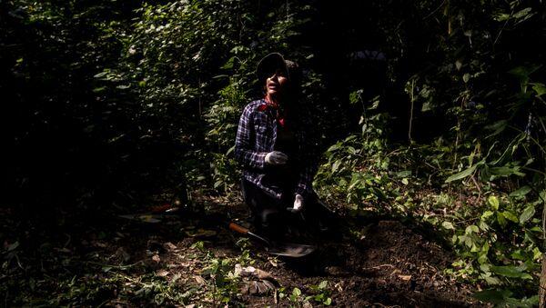 Familias de desaparecidos denuncian campos de exterminio en Veracruz - Sputnik Mundo