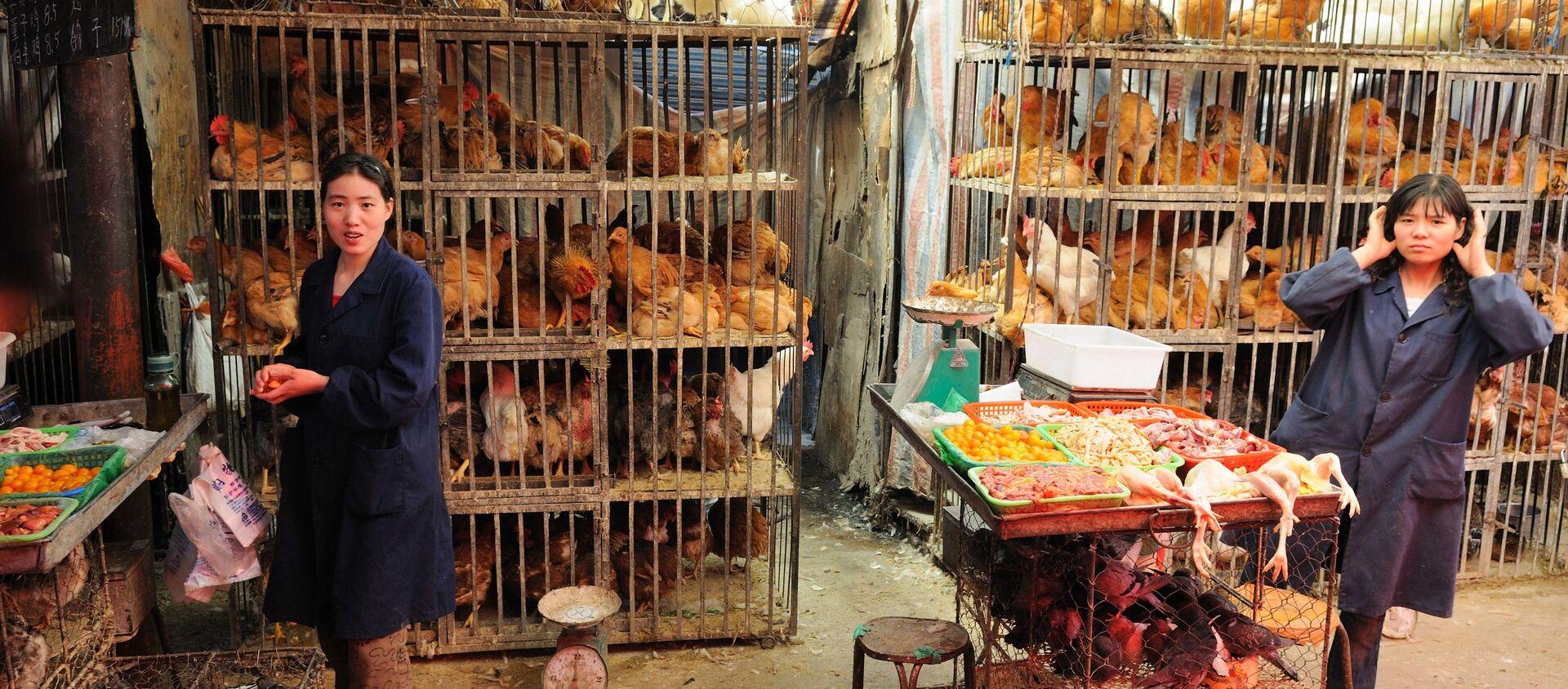 Un mercado de animales en Xining, China - Sputnik Mundo, 1920, 29.02.2020