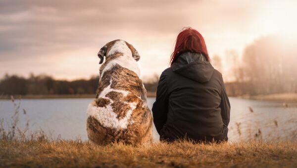 Amistad perro y humano - Sputnik Mundo