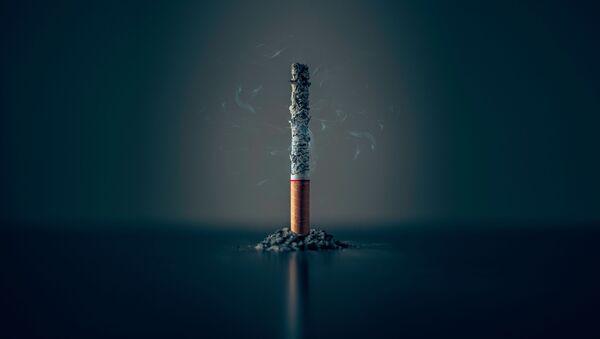 Un cigarillo (imagen referencial) - Sputnik Mundo