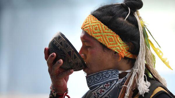 Un indígena en Brasil - Sputnik Mundo