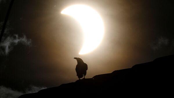 El raro eclipse solar anular, visto desde diferentes partes del mundo    - Sputnik Mundo