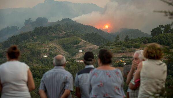 Incendio forestal en la isla española de Gran Canaria en agosto de 2019 - Sputnik Mundo