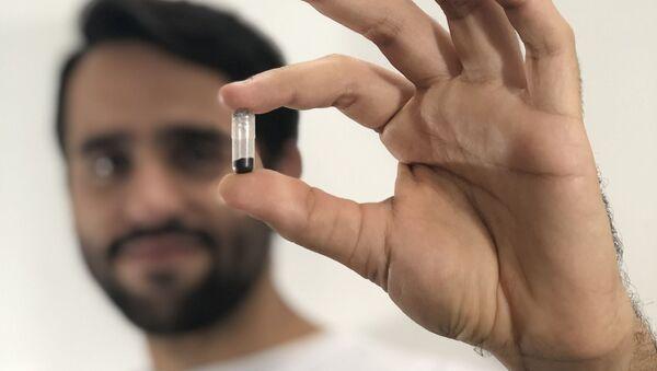 Mini cápsula con huevos de mosquitos transgénicos de Oxitec - Sputnik Mundo