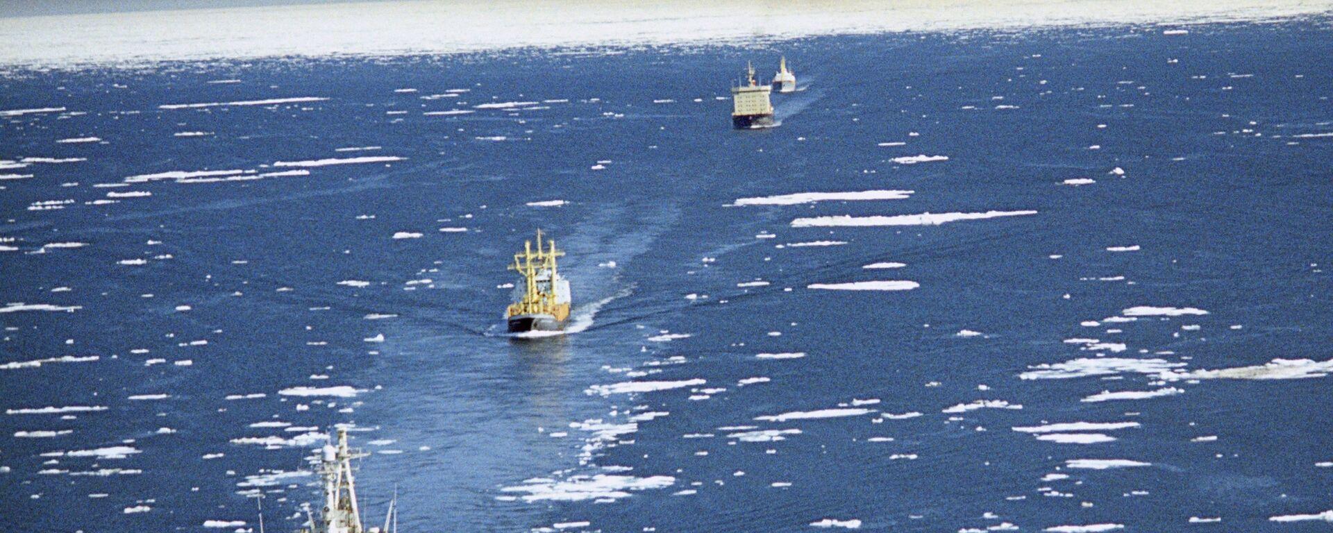 Караван судов на трассе Северного морского пути - Sputnik Mundo, 1920, 03.09.2021