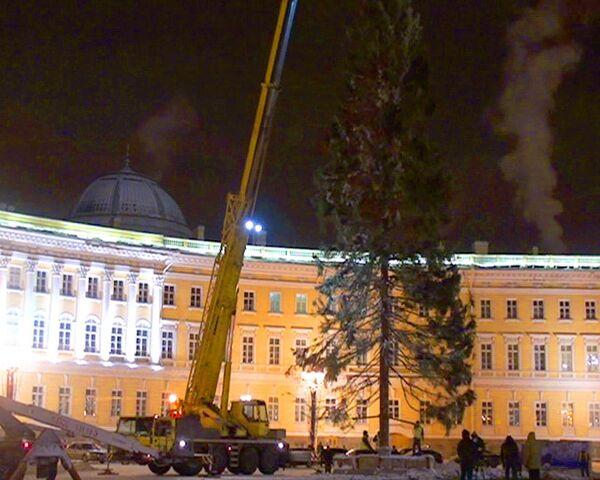 Imponente Árbol de Año Nuevo decora la plaza central de San Petersburgo - Sputnik Mundo