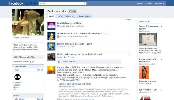 Pulpo oráculo Paul aún vive en la red social de Facebook - Sputnik Mundo