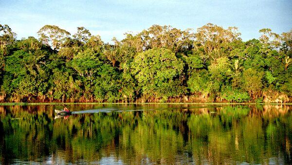 El hombre pobló la Amazonia boliviana antes de lo que se creía - Sputnik Mundo