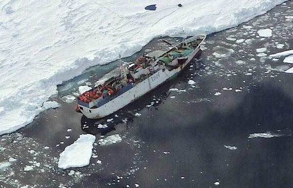 Rompehielos surcoreano libera a pesquero ruso atrapado entre hielos cerca de Antártida - Sputnik Mundo
